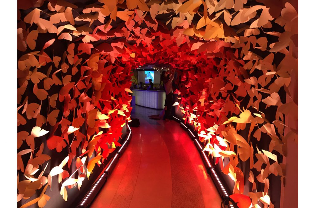 Butterfly Tunnel, Sushi Samba